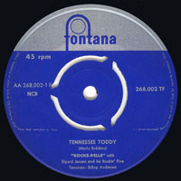 Rocke-Pelle - Tennessee toddy / A teenage love affair
