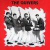 The Quivers Story