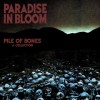 Pile Of Bones - A Collection